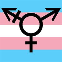 trans-logo